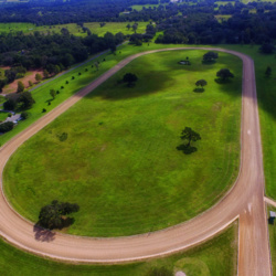 Finding the Perfect Horse Track Property
