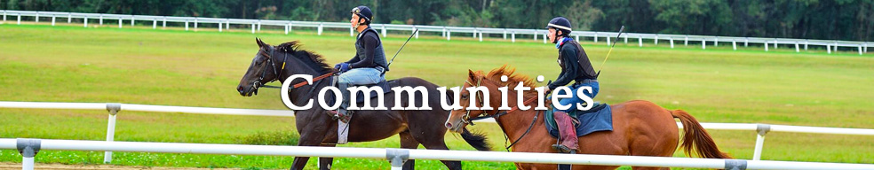 Click here to take a look at Ocala Area Equestrian Communities.