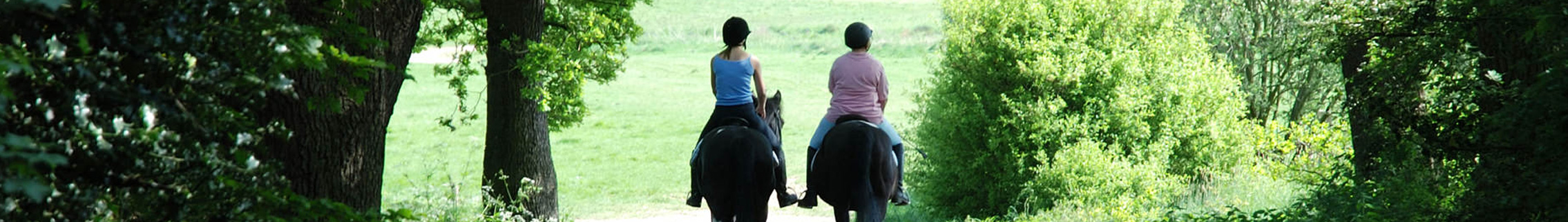 All horses welcome on these riding trails.