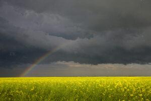 A summer storm with a rainbow.
