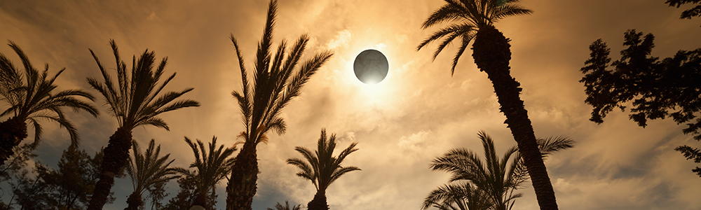 The upcoming eclipse could have an interesting effect on your animals.