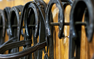Local Resources | Tack and Feed Retailers of Ocala