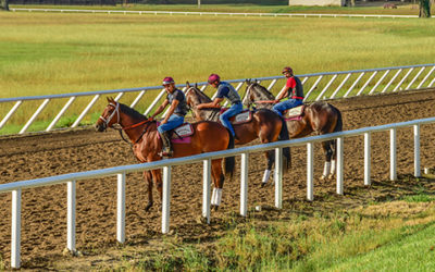 Thoroughbred Economy Notably Strong in Florida
