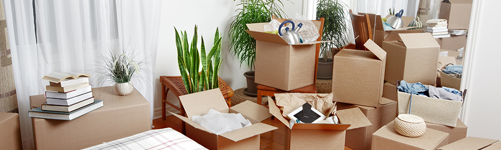 Moving? | Our Nine Tips to Save Money on your Next Move