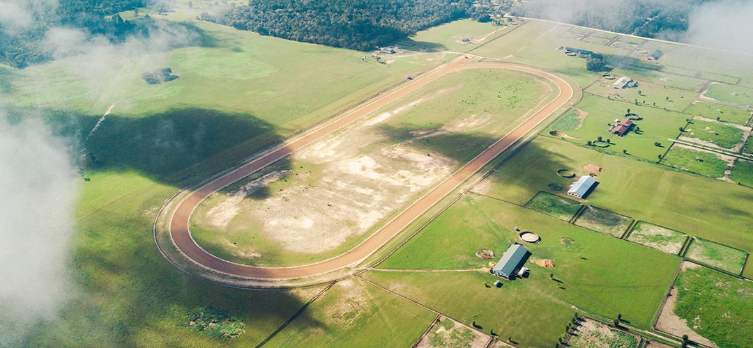 The Florida Mile | A Pristine Horse Farm in Williston, Florida