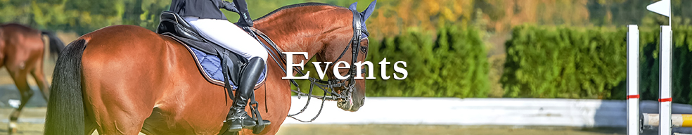 Click here to take a look at Ocala Area Equestrian Events.