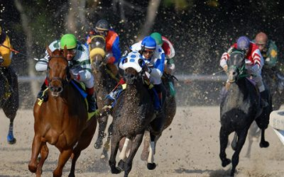 Everything You Need to Know About the 2020 Belmont Stakes