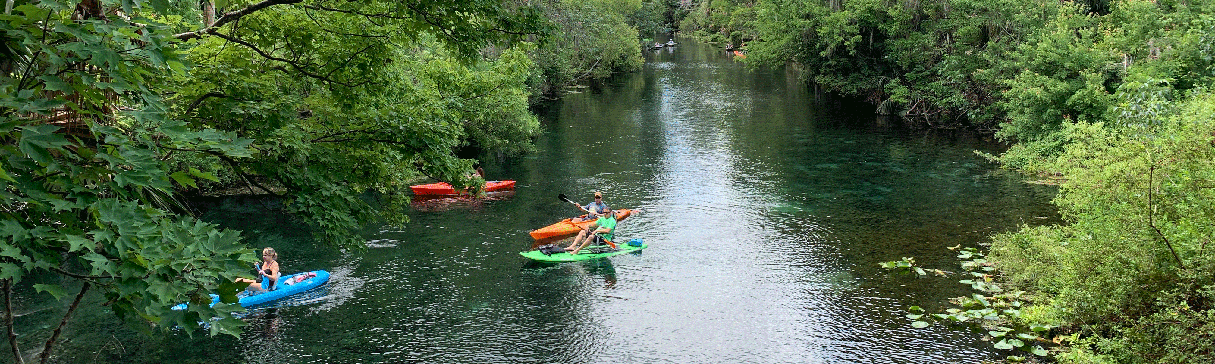 Kayakers on the Silver River in Ocala