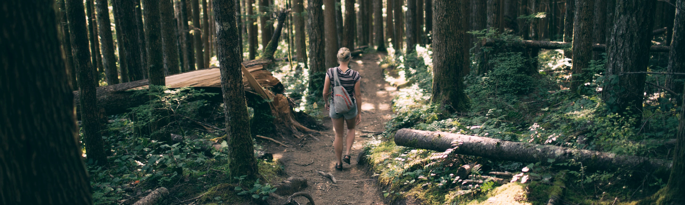 A woman hiking on a woodsy trail.