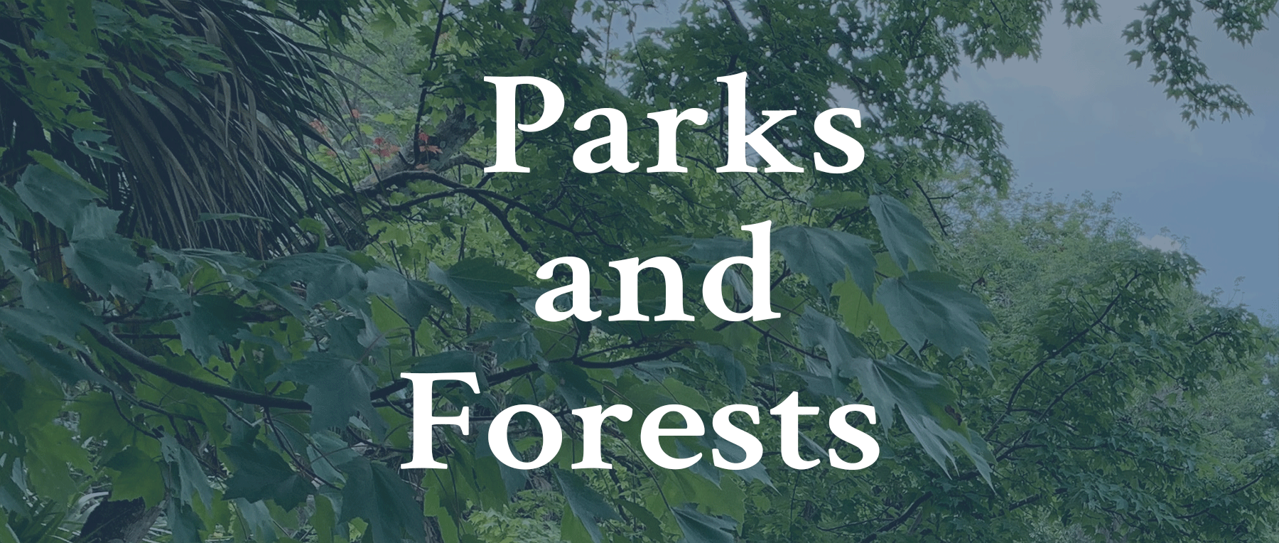 Click for Parks and Forests