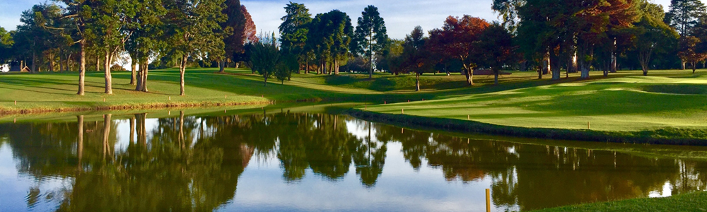 A reflective lake in a golf course.