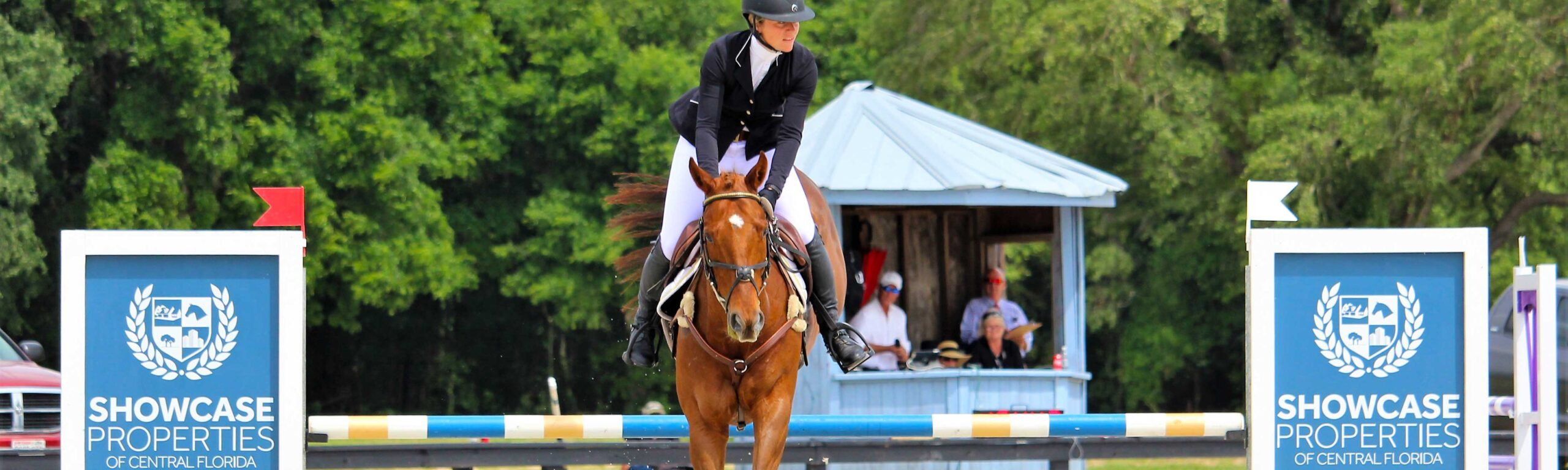 A competitor horse and rider jumping over the Showcase Properties at the Florida Horse Park.