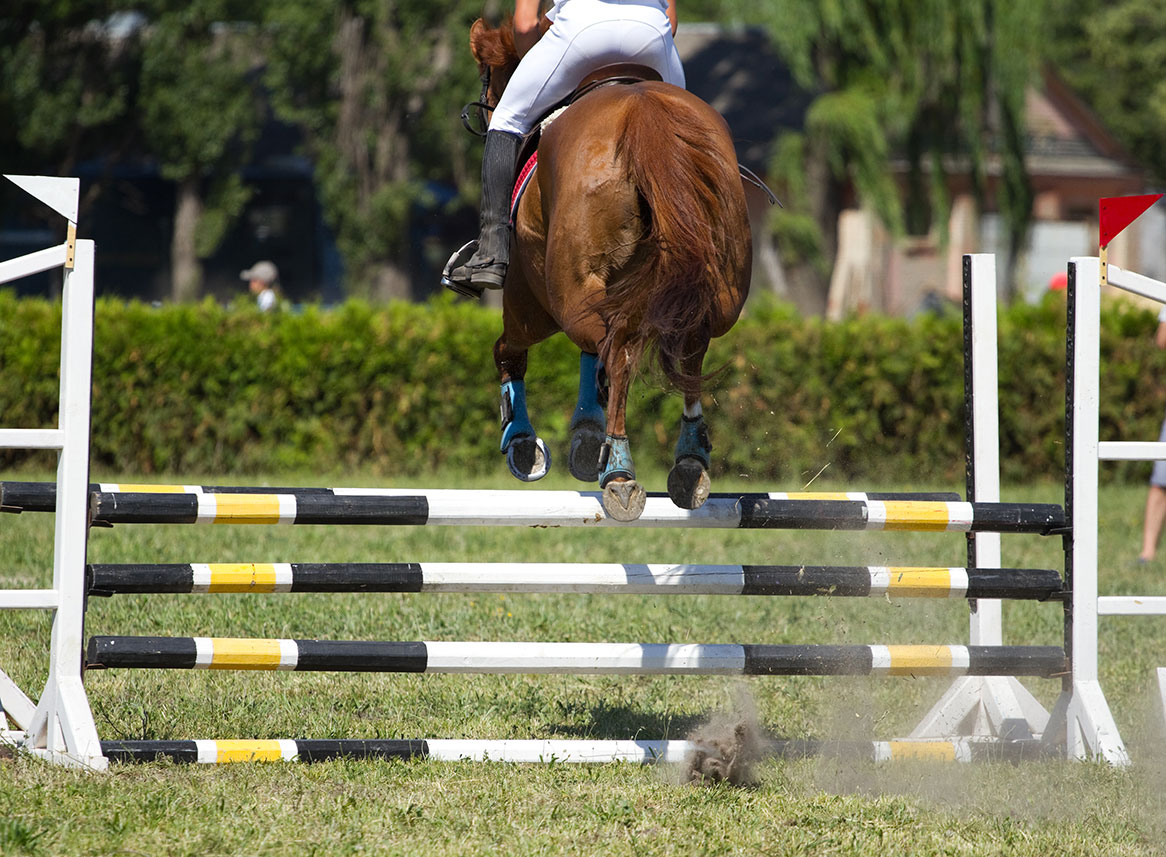 A rider jumping her horse over a jump.