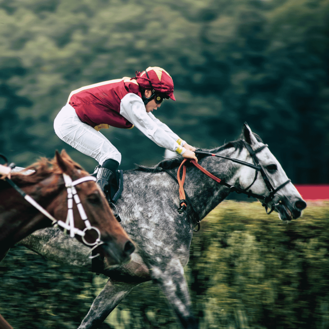 A jockey and horse racing on a track.