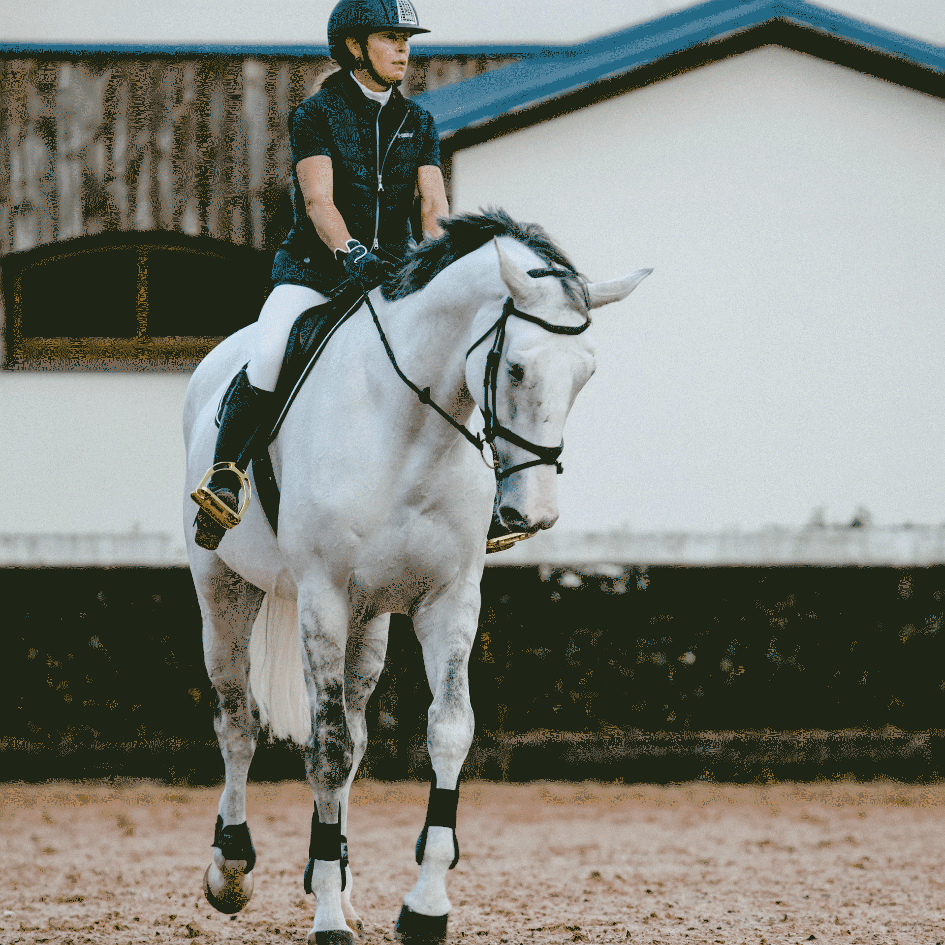 A girl riding her horse in an arena