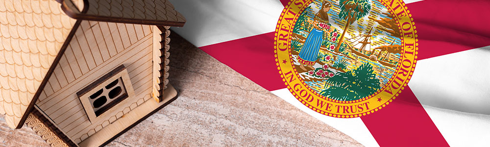 Florida Taxes | A Look at the Difference Between Florida and Other States