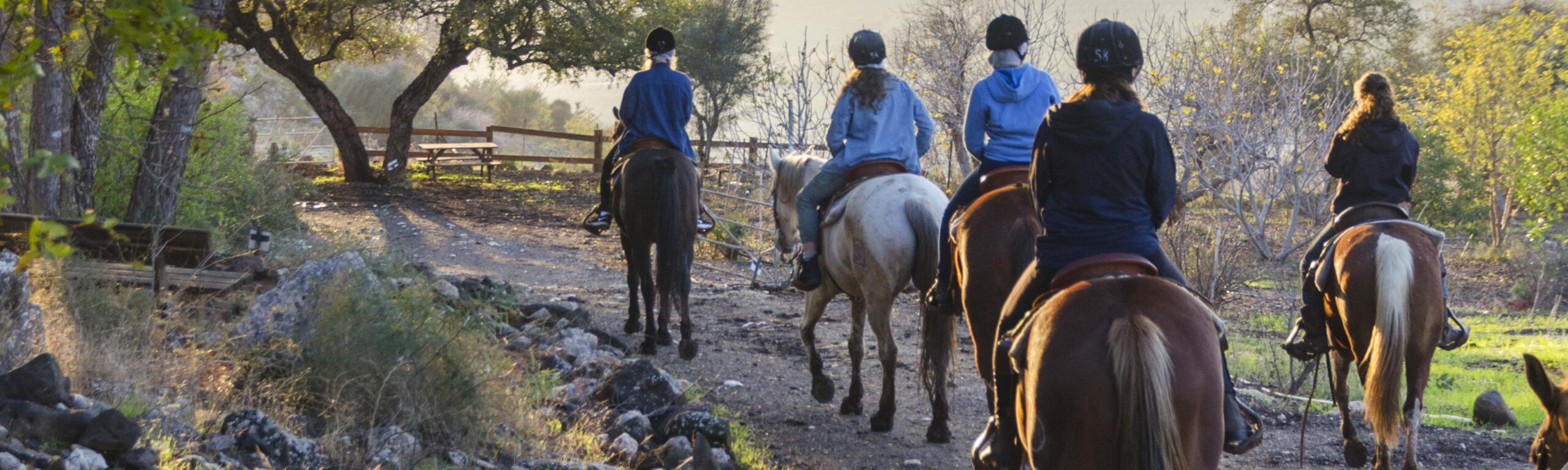 Riders on a horse trail.