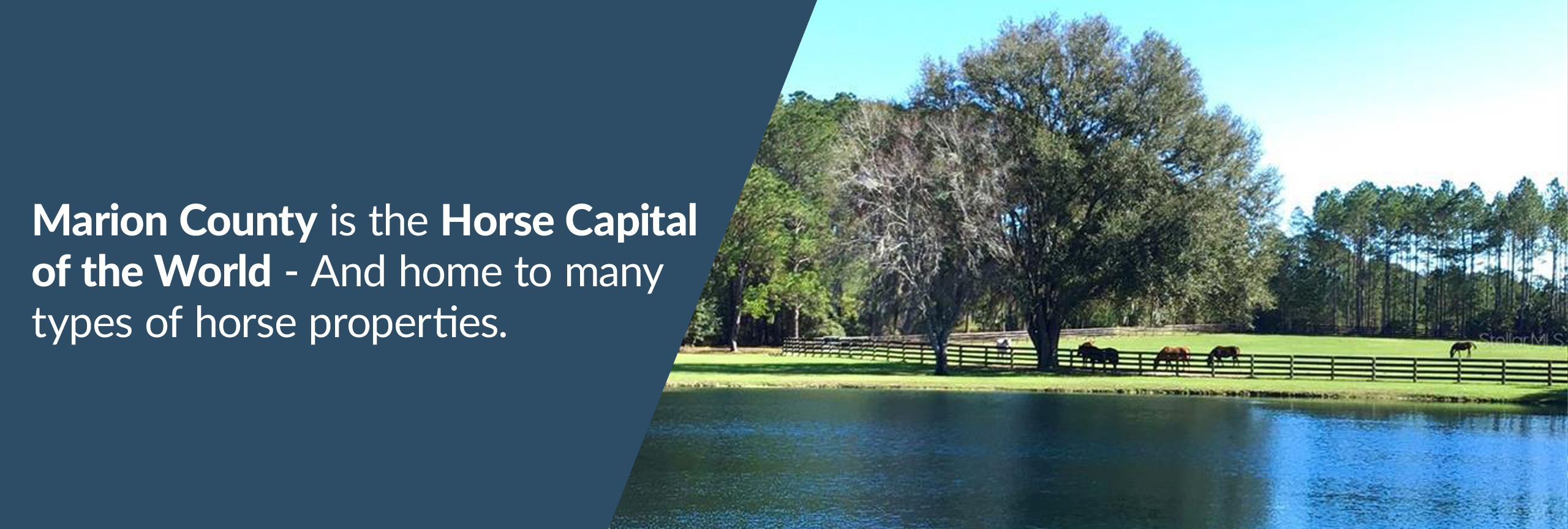 Marion County is the Horse Capital of the World® and home to many horse properties.