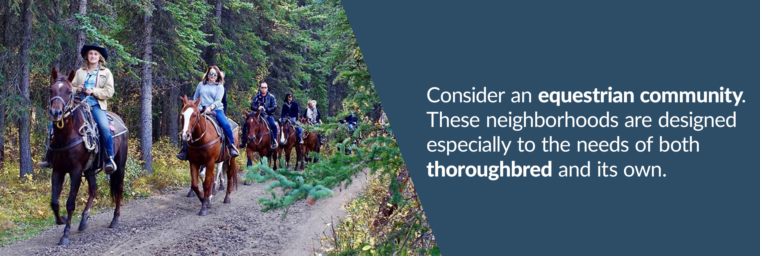 Consider a equine community. These neighborhoods are designed for the horse and owner alike.