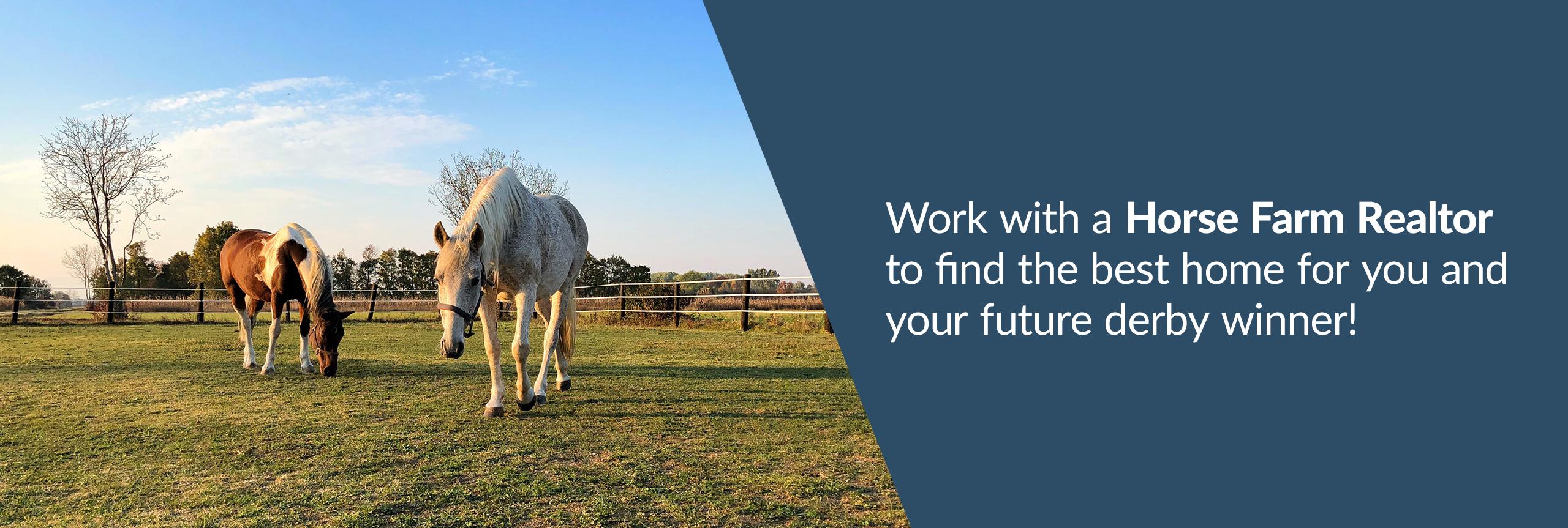 Work with a horse farm REALTOR®.