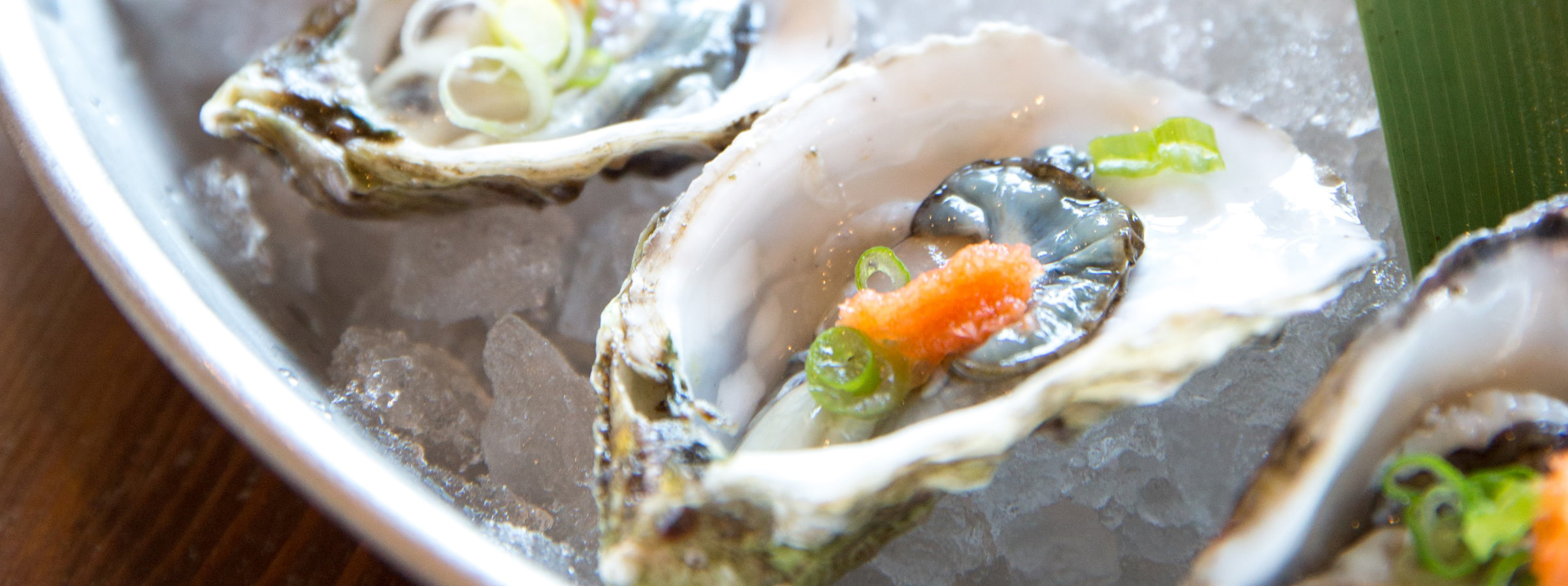 Juicy oysters on the half shell.