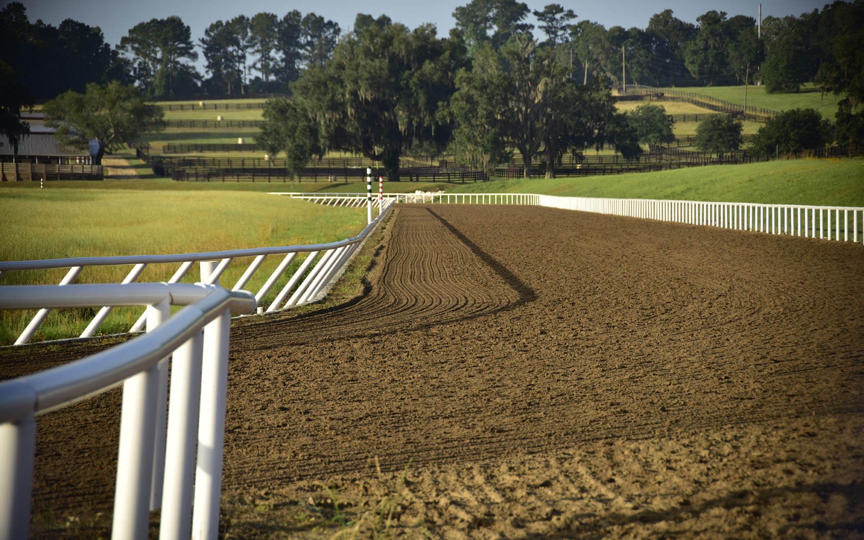 Looking down the track at Bridlewood Farm