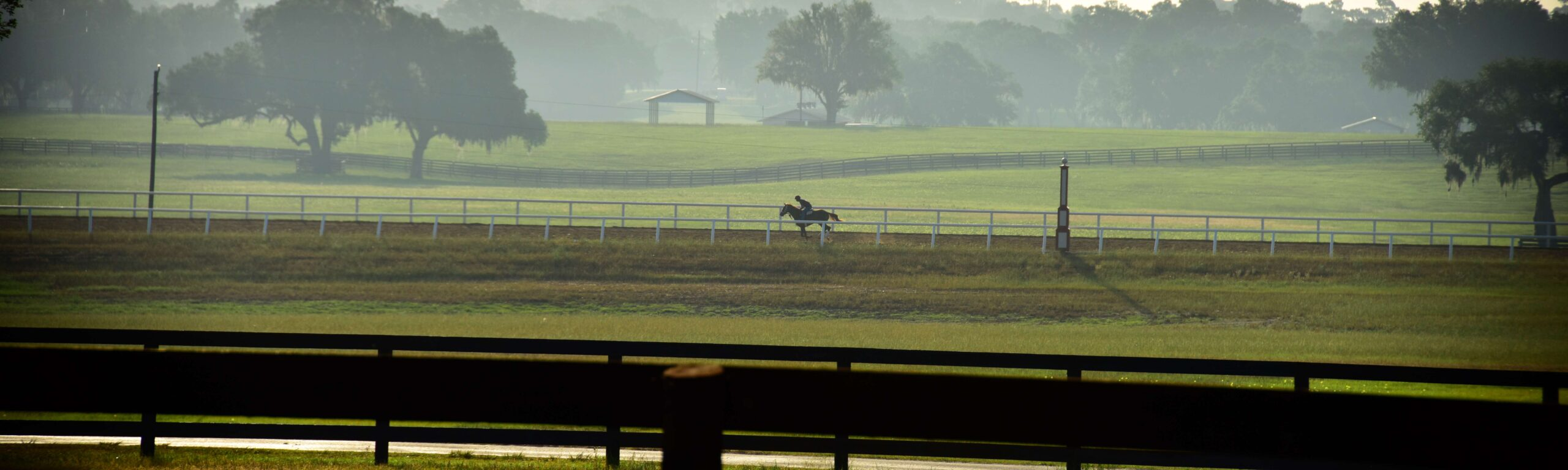 A horse and jockey on the track at Bridlewood Farm