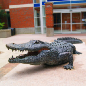 An alligator sculpture outside the Stadium at UF