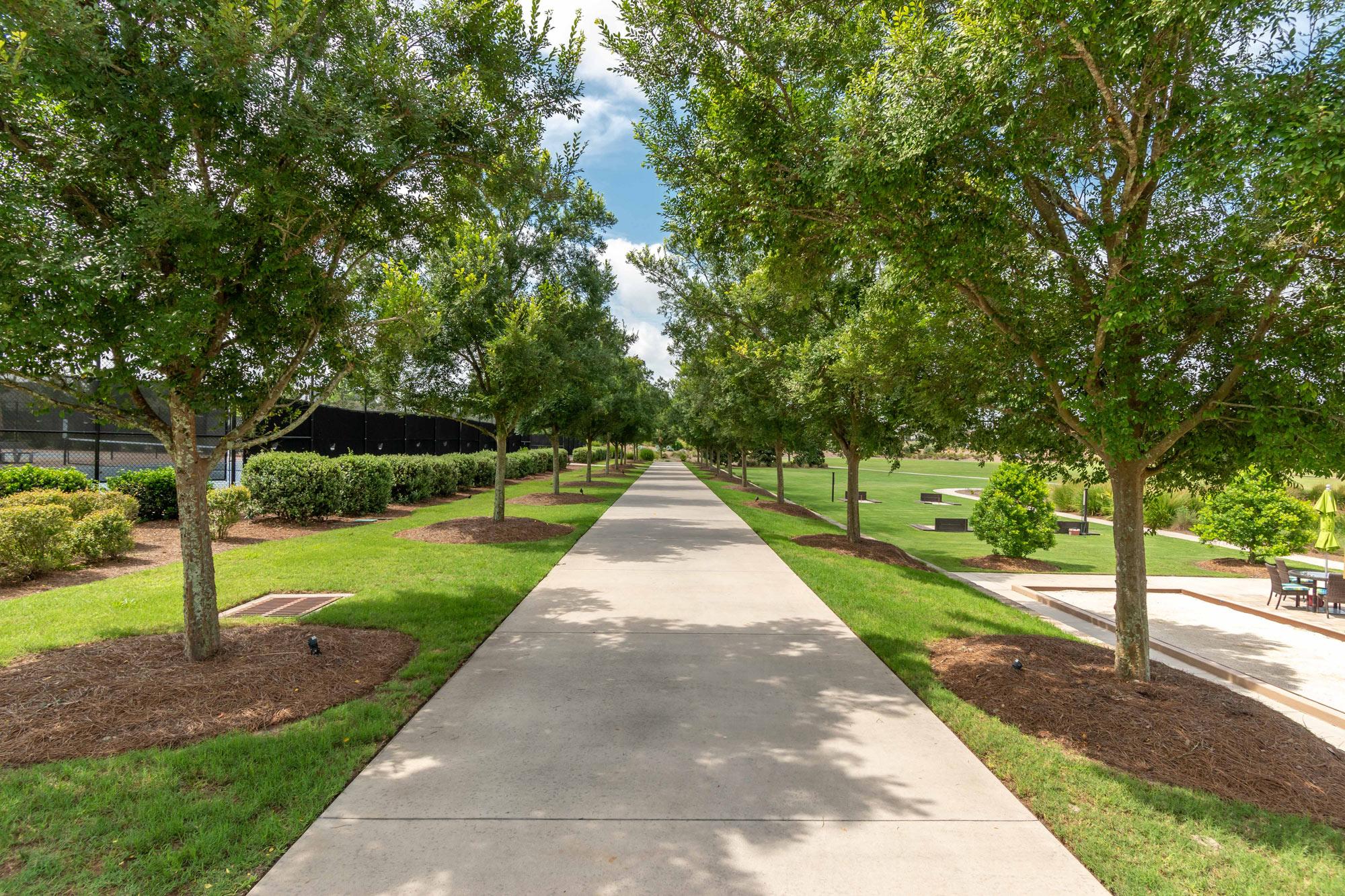 A tree-lined sidewalk in the Ocala Preserve neighborhood.