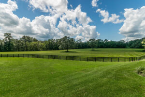 A rolling green pasture with fencing.