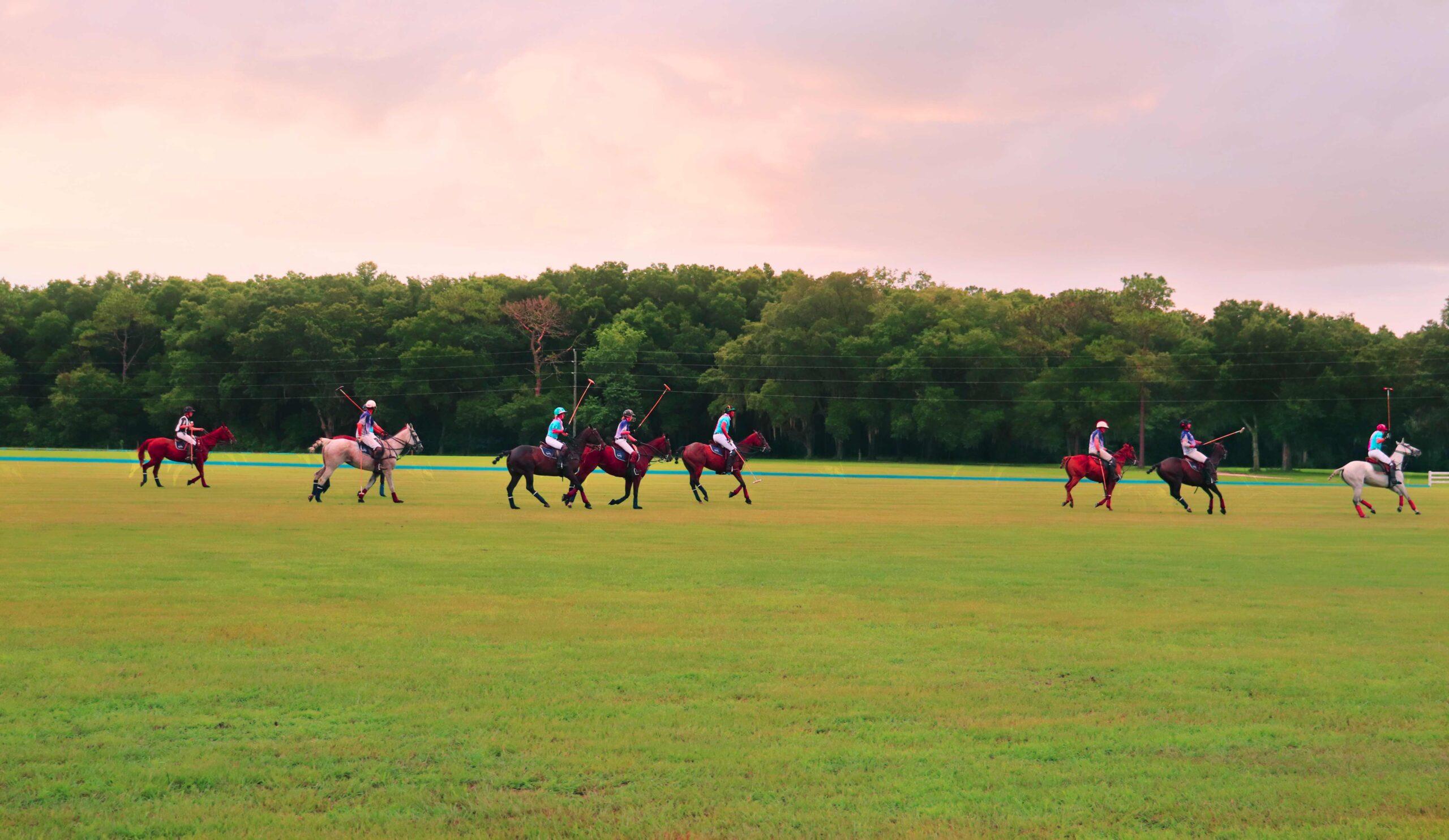 A Ocala Polo Club match at the Florida Horse Park
