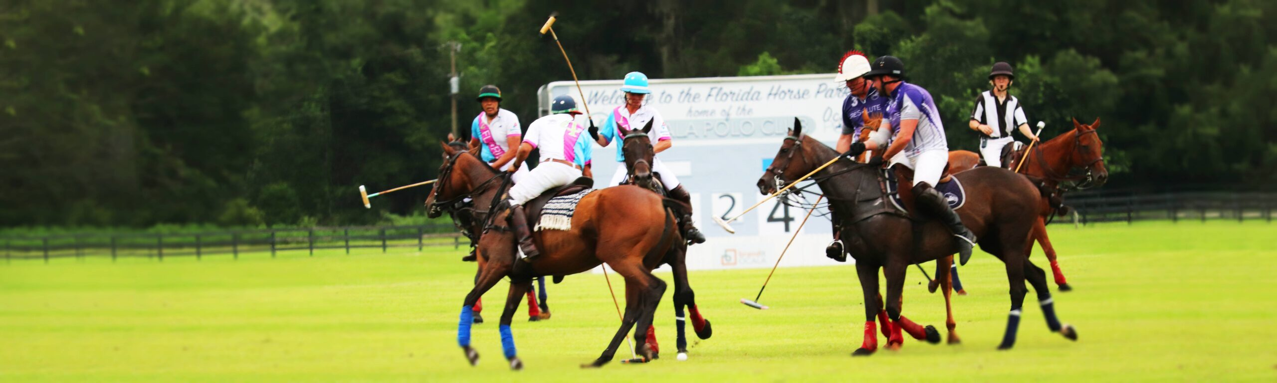 A polo match at the Florida Horse Park