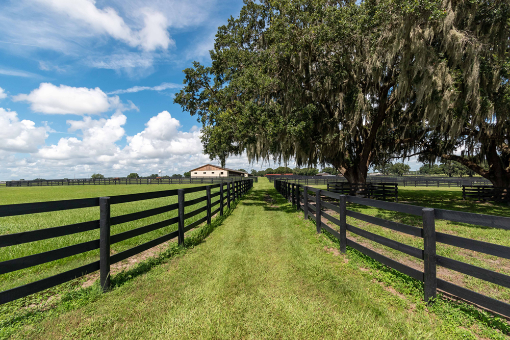 Green pastures at Sequel at Winding Oaks