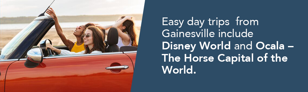 Easy day trips  from Gainesville include  Disney World and Ocala – The Horse Capital of the World.