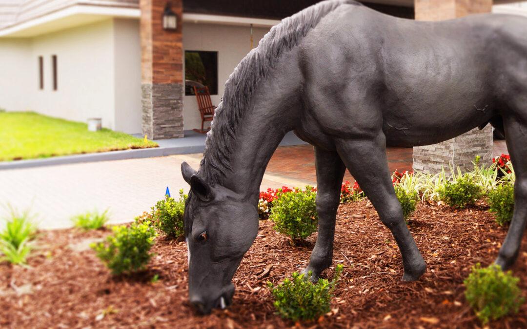 Community Spotlight | The Equus Inn